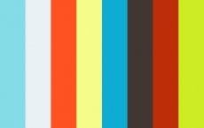 Distripolis